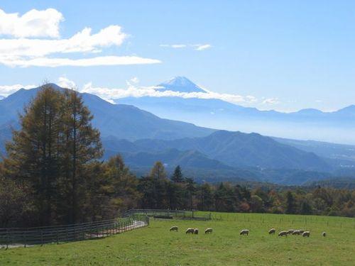 148_48452 まきば公園より富士山を望む