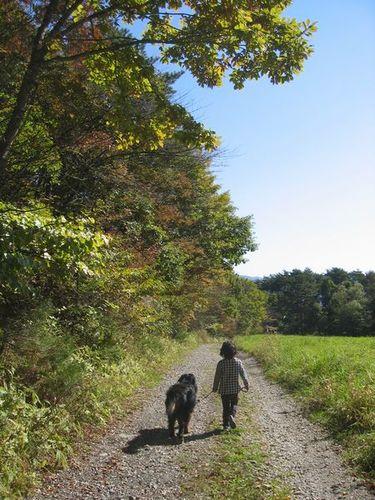 Img_80452 「シカの森」の帰り道