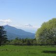 Img_67862 八ヶ岳牧場から富士山を望む