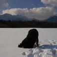 Img_00232 雪遊び