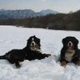 Img_59232 雪遊び