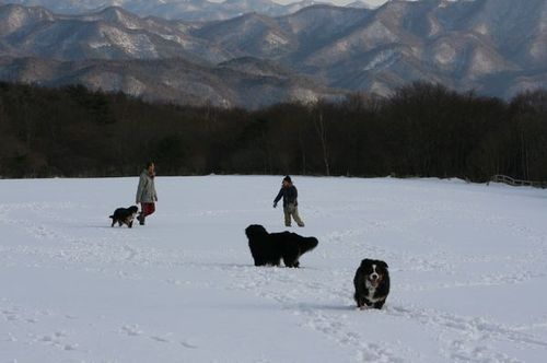 Img_00122 雪遊び