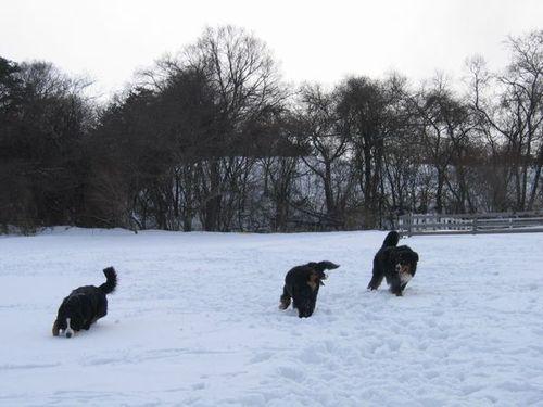 Img_59312 雪遊び